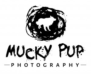 Mucky Pup Photography Swansea South Wales